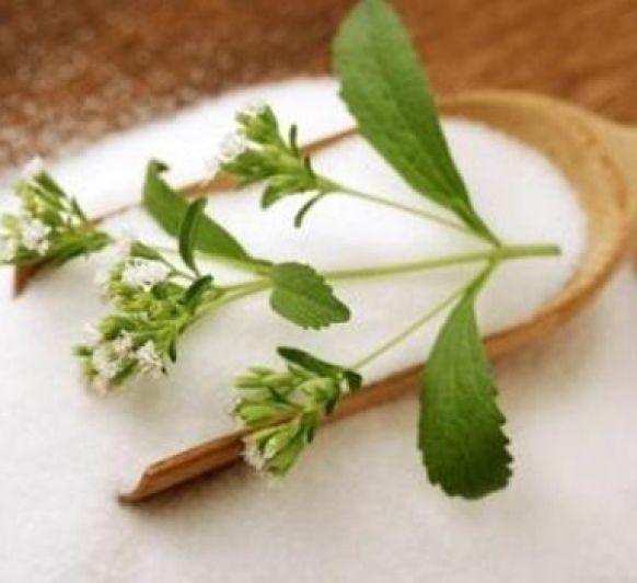 Cómo reemplazar el azúcar por stevia